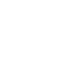 風俗WordPress専用 | プロフィール